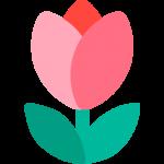 zinvollerleven.nl tulpje