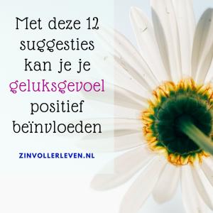 geluksgevoel zinvollerleven.nl