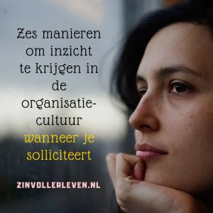 87 Zes manieren om inzicht te krijgen in de organisatiecultuur wanneer je solliciteert zinvollerleven.nl