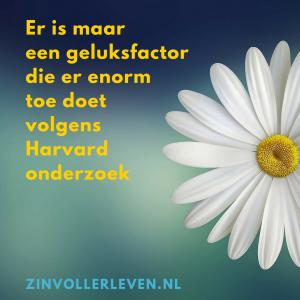 geluk een geluksfactor die er enorm toe doet volgens Harvard onderzoek zinvollerleven.nl
