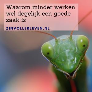 minder werken meer leven zinvollerleven.nl