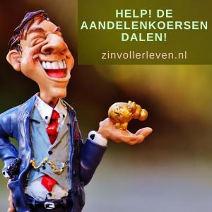 vermogen, beleggen Help de aandelenkoersen dalen zinvollerleven.nl