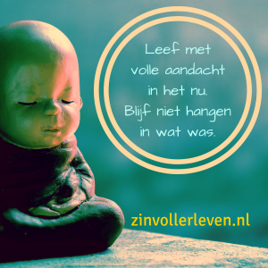 leef met volle aandacht in het nu zinvollerleven.nl
