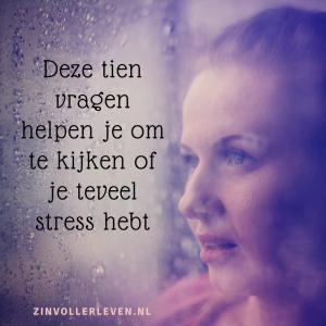 Deze tien vragen helpen je om te kijken of je teveel stress hebt zinvollerleven.nl