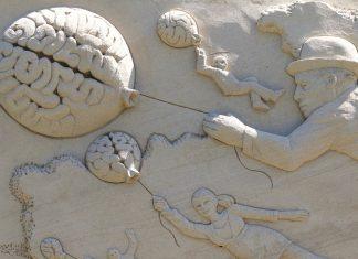 meningen die ons bevallen worden door ons brein razendsnel tot feiten verwerkt zinvollerleven.nl