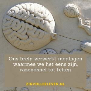 Ons brein verwerkt welgevallige meningen tot feiten zinvollerleven.nl