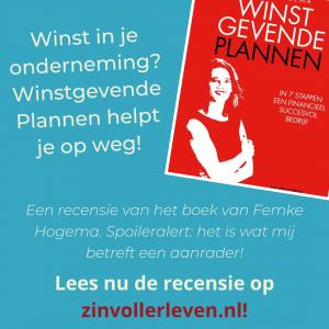 recensie winstgevende plannen femke hogema zinvollerleven.nl onderneming