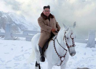 kim jong-un paard grote kameraad noord-korea