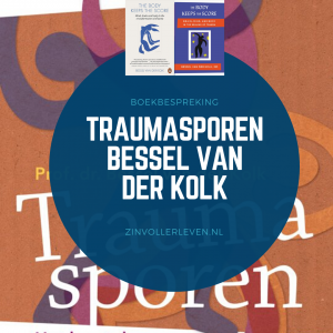 Traumasporen the Body Keeps the score boekbespreking Bessel van der Kolk zinvollerleven.nl